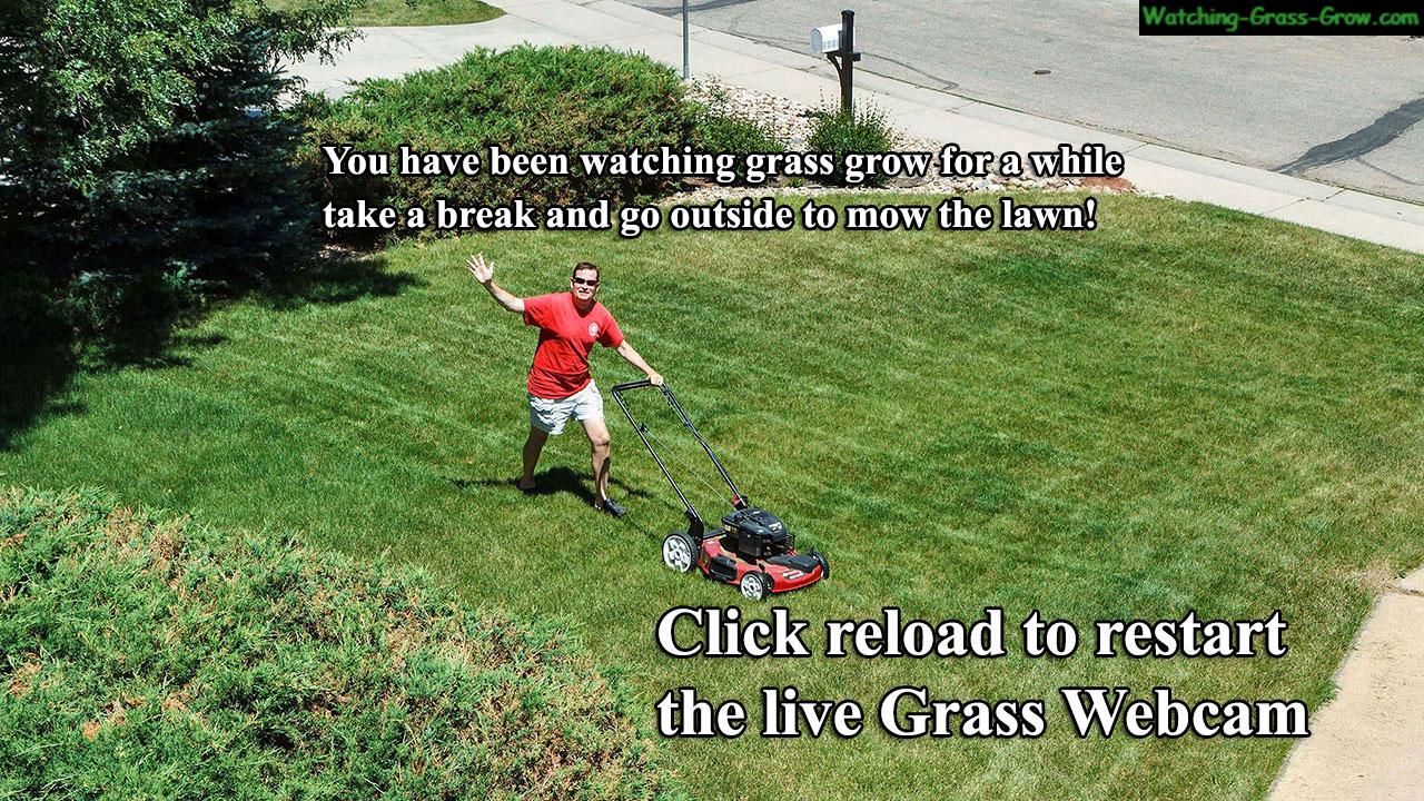 mow-lawn-break.jpg