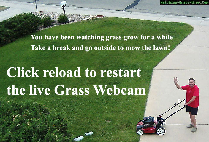 mow lawns pictures