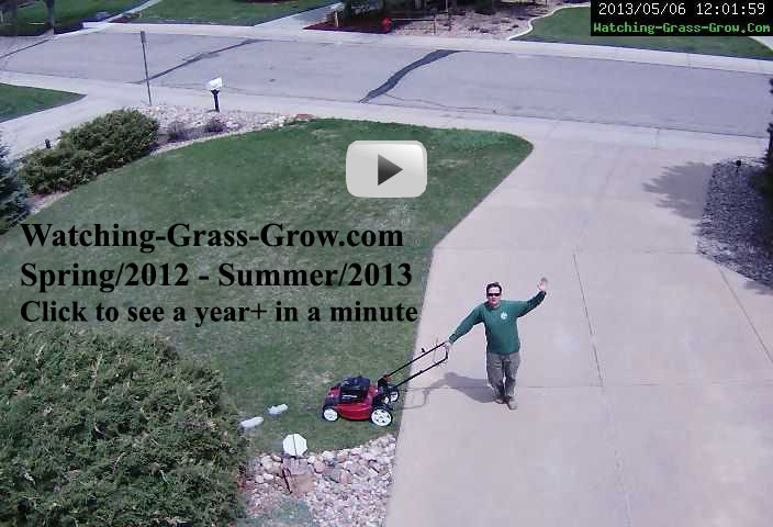Click to watch movie of grass growing for a year